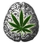 2ème journée de Psycho-Addictologie «les soins croisés»